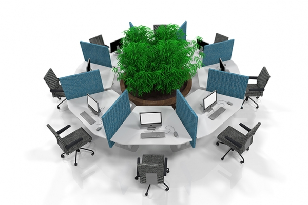 COwerk-TNO-DenHaag-CallCentre-werkplek-03-5Nov2014
