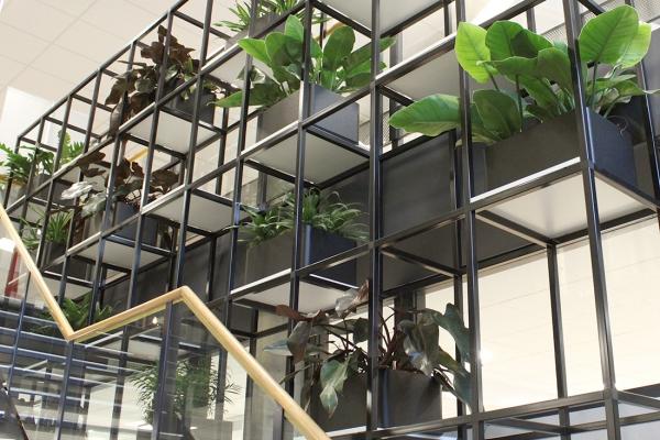 COwerk Cast divider wandkast staal zwart planten restaurant pr5