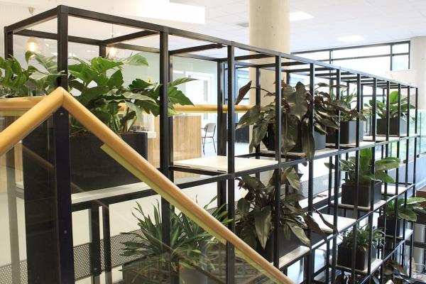 COwerk Cast divider wandkast staal zwart planten restaurant pr6